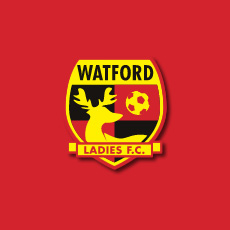 Watford Ladies F.C. Web Design (4)