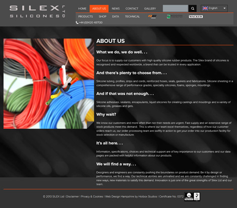 Silex Silicones - Web Design Hampshire - About Us