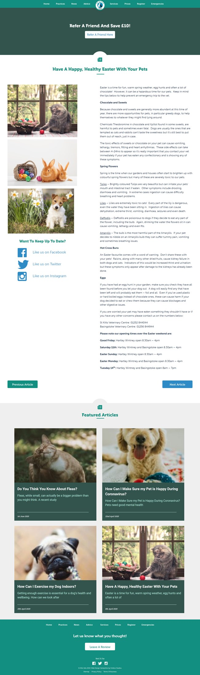 St Kitts Vet Website Design and WordPress Web Development SP009 News Article