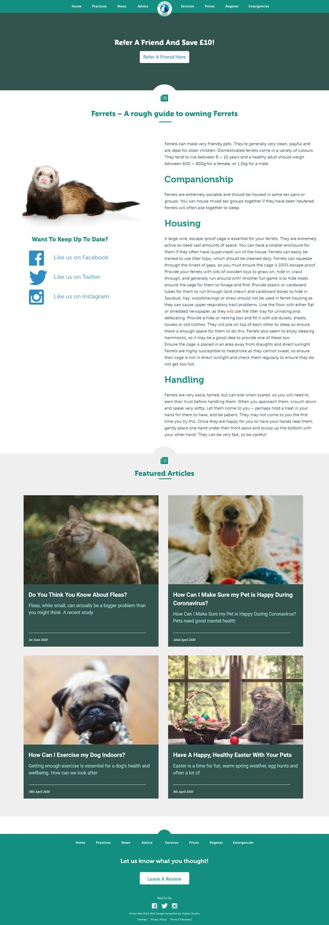 St Kitts Vet Website Design and WordPress Web Development SP011 Advice Exotic Pets Rough Guide Owning Ferrets